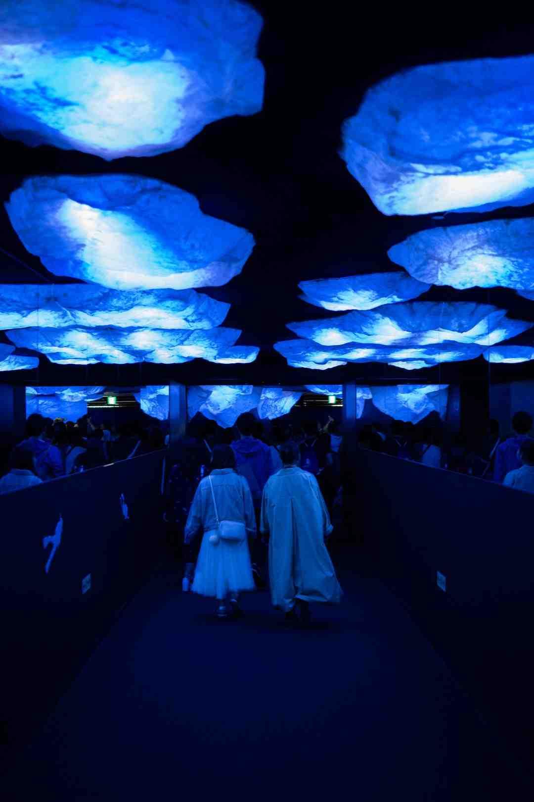 Quel éclairage LED pour aquarium?