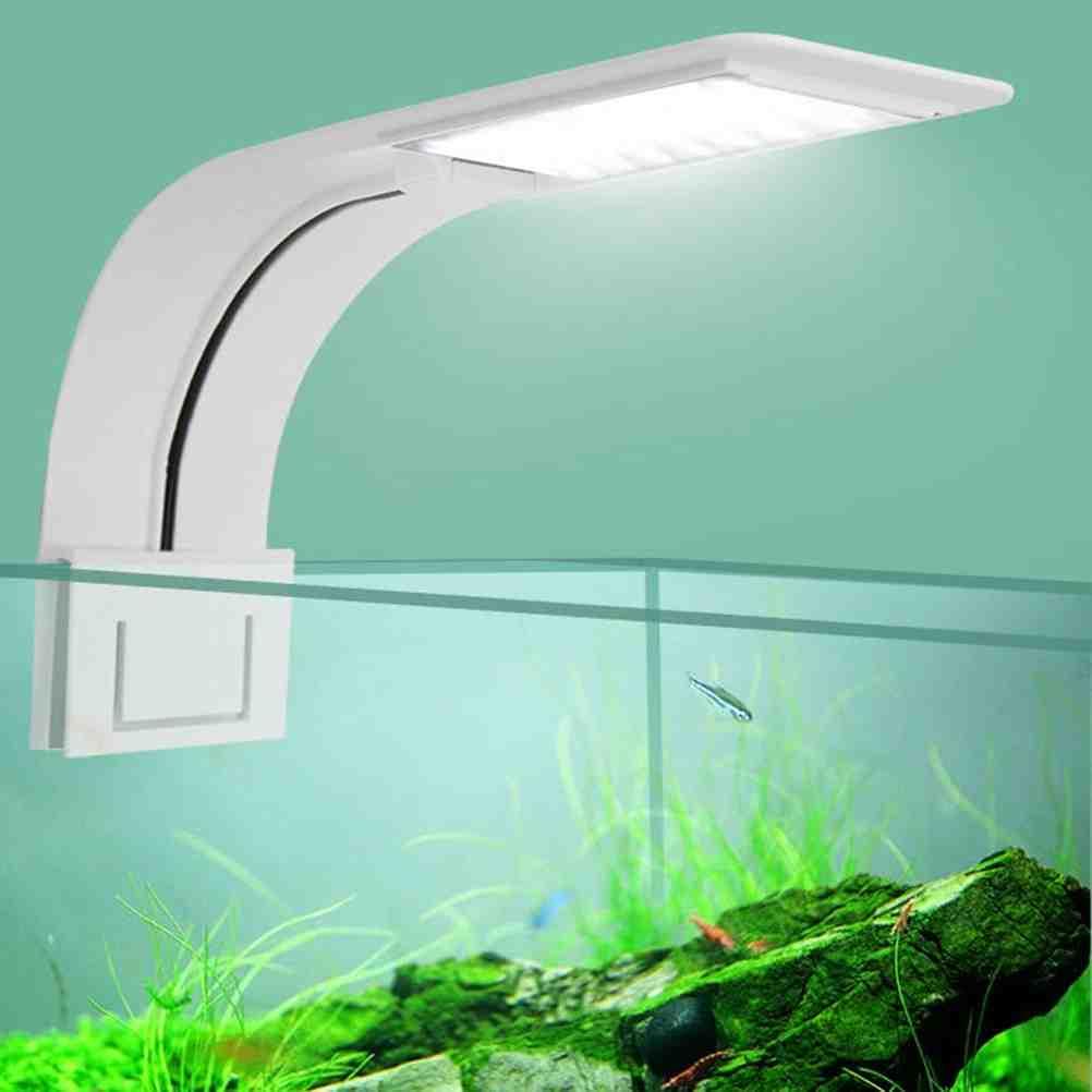 Quel tube LED pour aquarium?